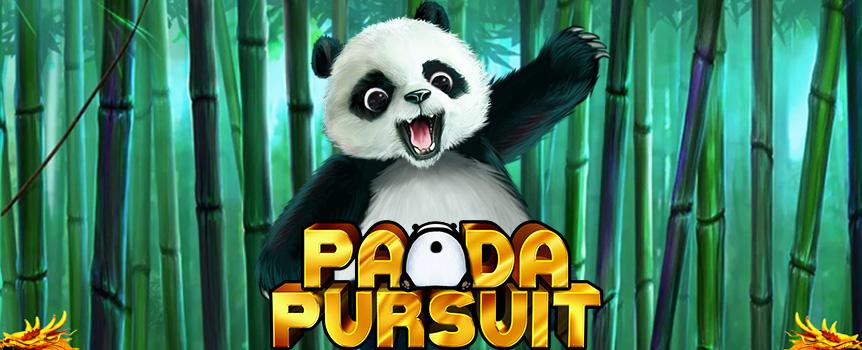 Slot Online Panda Pursuit